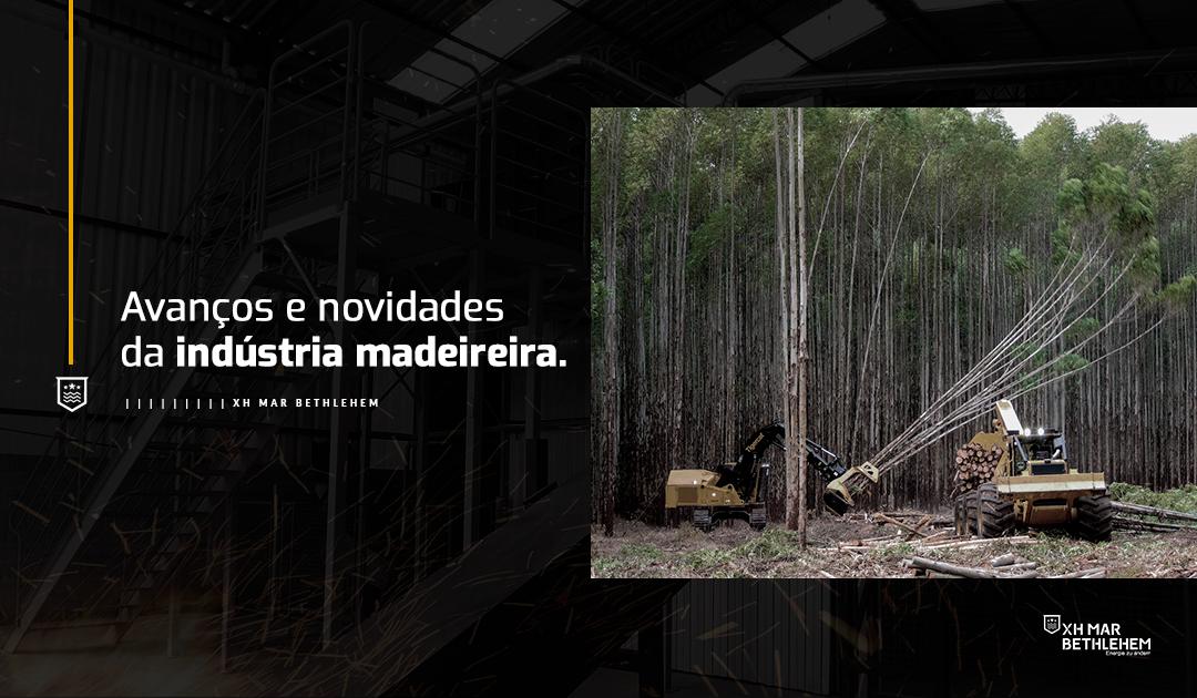 Avanços e  novidades da indústria  madeireira